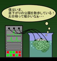 水槽の脳。