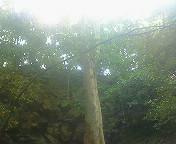 200807121321000.jpg