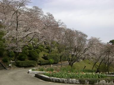 半田山植物園1