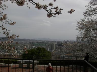半田山植物園3