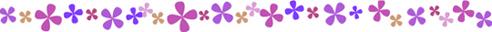 クローバー(紫)