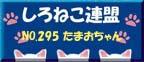 295_tamao.JPG