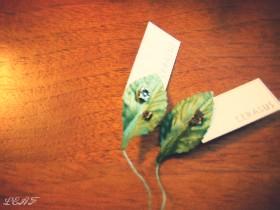 ケラスス/CERASUS】little flower ピアス