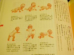 はじめて出会う育児の百科