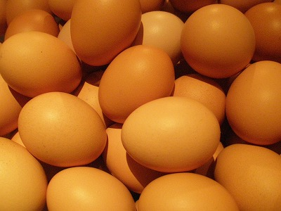 比内地鶏の卵