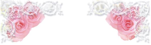 薔薇花壇 1