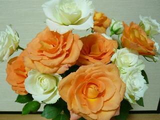 16本のバラ