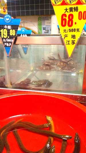 カルフールの鮮魚売り場。