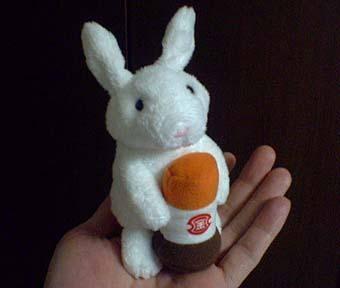 フンドーキンウサギ