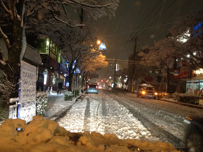 大雪の埼玉