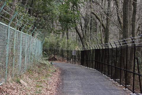 狭山丘陵の林道