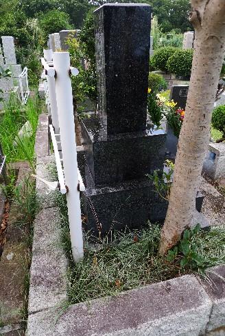 小平霊園百合の花.jpg