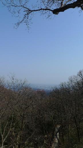 高尾山頂からの景色.jpg