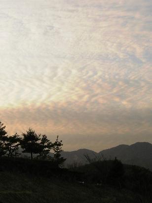 今日の夕方の空。