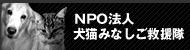 NPO犬猫みなしご.jpg