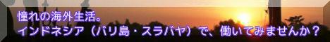 海外スタッフ募集バナー.jpg