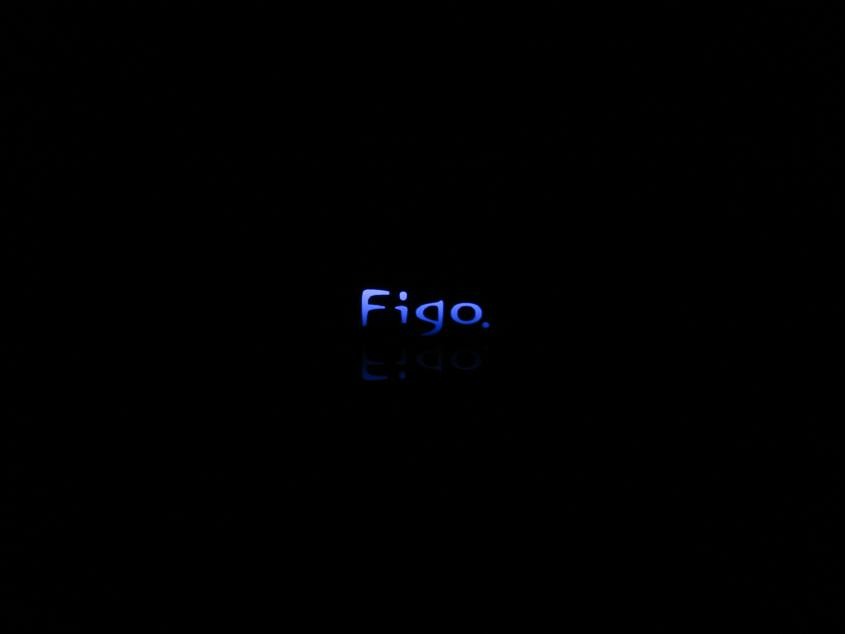 DSC02207Figoロゴ.JPG