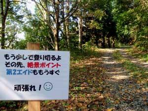 madarao_0914.jpg