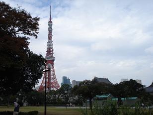 増上寺からタワー.jpg