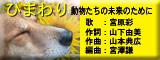 himawarimusic.jpg