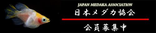 jma2[1].jpg