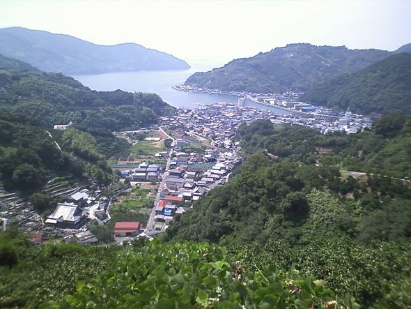 吉田湾.jpg