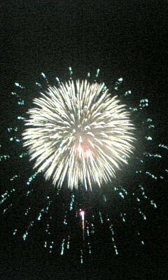 2007年8月18日多摩川花火大会 -2