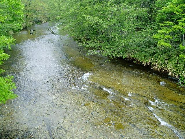 北海道 茶屋川