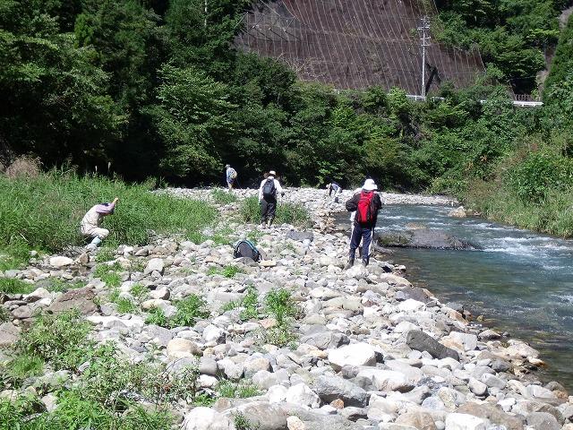 根尾川にて探石