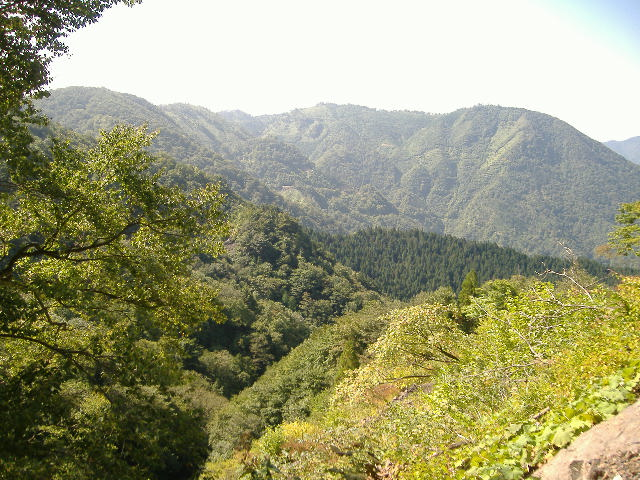 岐阜県 根尾の山々