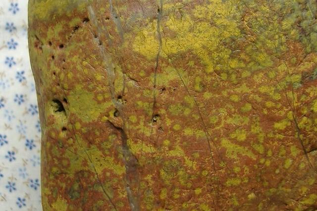 土岐石 紋石