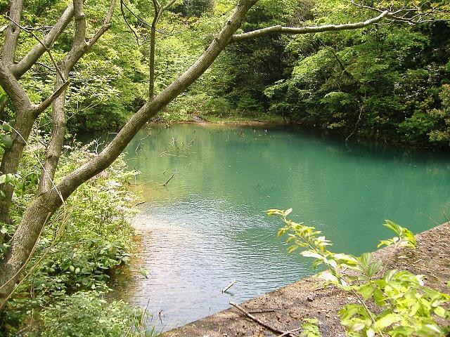 福井県のダム