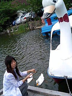 kurond5/28白鳥ボート