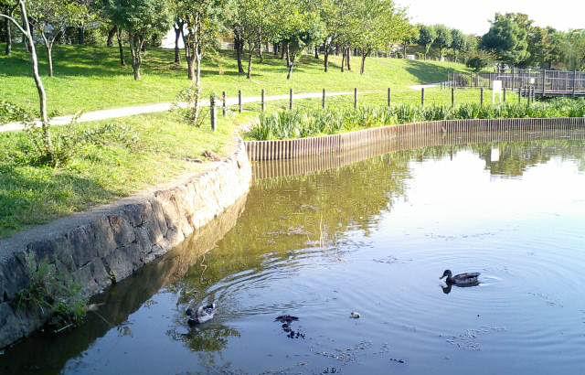 0610271442白鷺公園