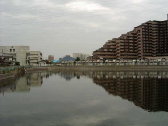 0610281327堺市今池