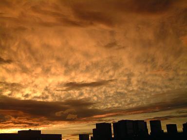 20060808_5sora.JPG