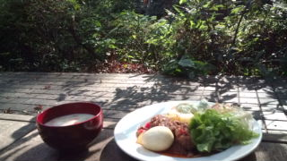 garden_lunch.jpeg