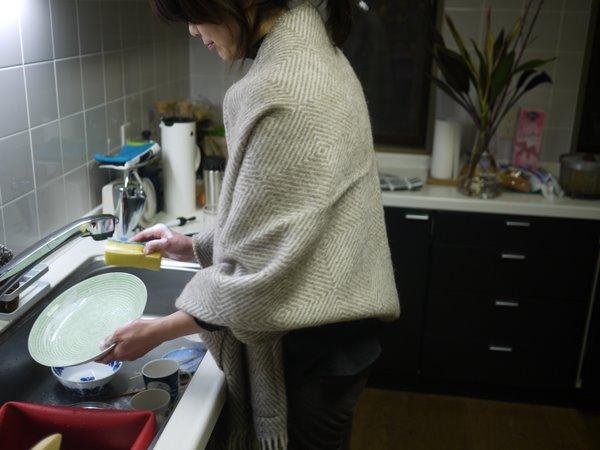 食器洗いも可.JPG
