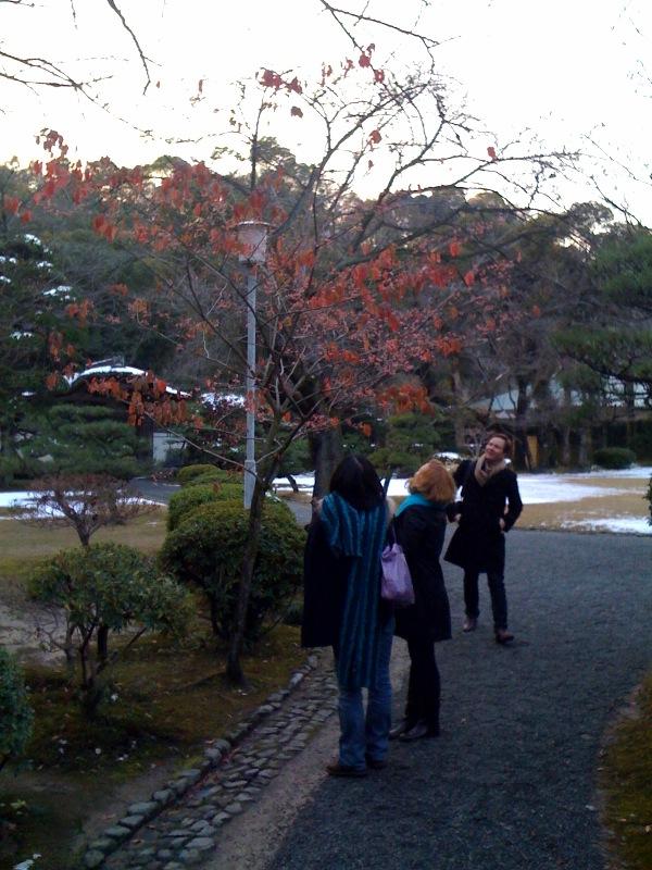日本のトラディショナルなイメージの種を持って帰って欲しかったんですよねー.jpg