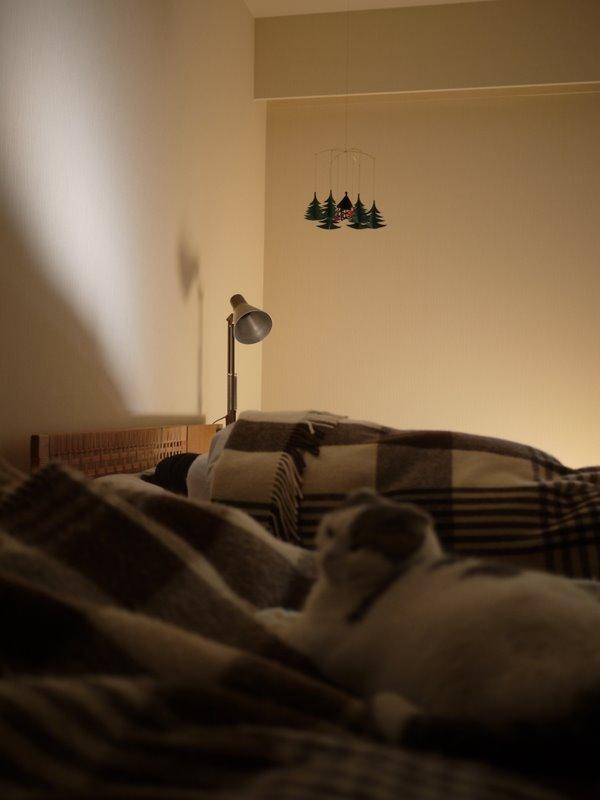娘もベッド横.JPG