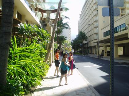 hawaii t29.jpg