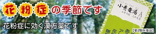 banner_syouseiryutou.jpg-500.jpg