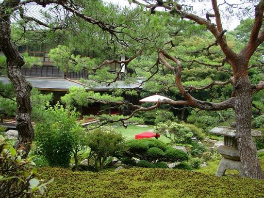 13 庭園.JPG