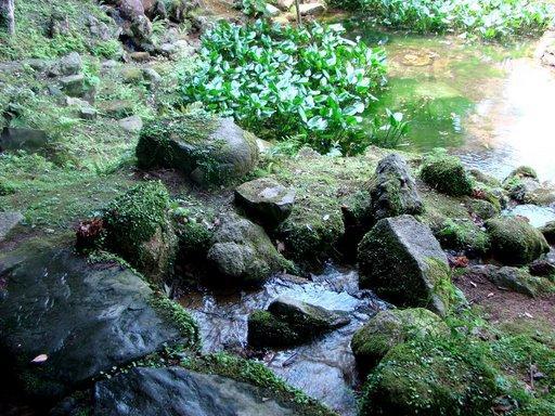 池泉回遊式庭園1.jpg