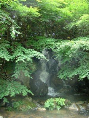 散策5滝.jpg
