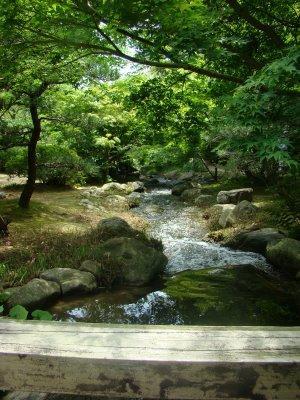散策7小川の流れ.jpg
