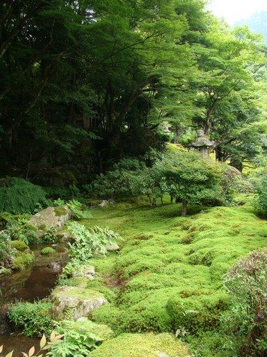 2 庭園2.JPG