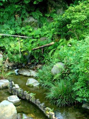 5 garden kan.jpg