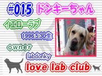 love lab club