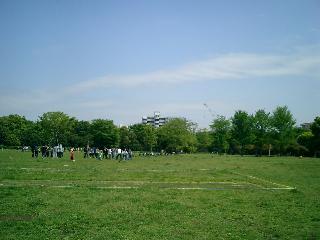 木場公園ふれあい広場